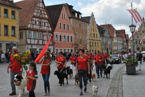 Kirchweih Festzug
